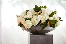 Corporate Flowers & Events / by Chantal