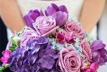 Future Wedding Ideas / by Rachel Kaye