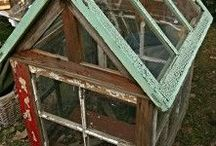 Old Windows / by Tammie Galyon