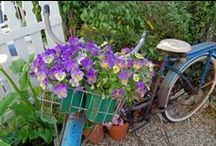Vintage Garden Treaurers / I am an artist, gardener, photographer and blogger. This is where I share my love for all things old and worn that end up in my garden or other vintage gardens (and lots lot them end up in my paintings).