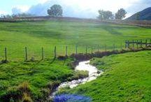 Parc naturel du Pilat - France / Aperçu de notre long séjour de 10 mois dans le Parc naturel régional du Pilat (France). De septembre 2015 à juin 2016. Retrouvez nos articles, photos et vidéos du Pilat : http://www.leszed.com/tag/pilat/