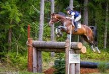Eventing! / by Maggie Little