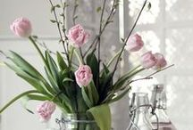 SPRING DECO / by Monica Sors