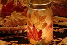 Fall / by Megan Marie
