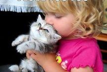 Cute!!! / #cute, #kids, #animals, #pet, #cat, #dogs, #puppies, #cuccioli, #bambini, #gatti, #cani