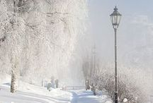 Winter wonderland / Winter wonderland