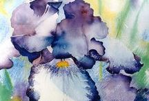 The Art Of Watercolors / Everything water color