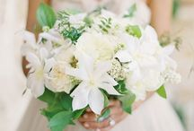 Wedding Ideas / by Susy Pisco