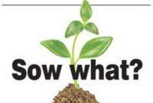 gardening goodies~gobs of info