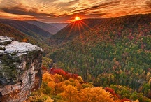 The World's Colors / Seasons changing  / by Kelsey Libert