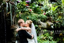 Everything Weddings / by Gaylord Hotels