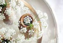 Flower Power / All the lovely flowers!
