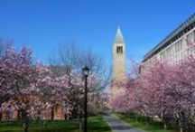 Cornell in Photos
