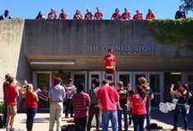 Let's Go Red / Cornell Pride | Spirit | Festivities | Celebrations