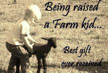 Farm Raised / by Racheal Perdue