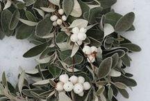 Holiday Decor-Frozen Christmas / Holiday decorating theme