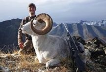 DST Hunting Trips / Looking for your dream hunting trip? Dream Sporting Trips offers a diverse portfolio of hunting guides with detailed information on all the trips that they offer! Search for trips all around the world.