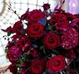 Red Weddings / Red, Poppies, Tulips, Roses, Anenome, Amaryllis, Dahlia, Winter, Spring, Centerpieces, Bouquets