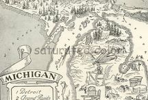 MICHIGAN...it's the Mitten! / by WeesDad