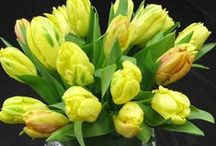 Sunny Yellow / NYC fresh cut flowers in yellow hues bring a touch of sunshine to any room!