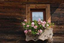 Carden -  Blockbau / Old Alpine Houses