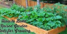 Gardening / Gardening, Gardening Tips, Gardening Ideas, How to Plant, How to Grow, Raised Beds, Composting, Homemaking, Homesteading, Fall vegetable garden,