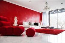 Zuri Designer Spaces / by Zuri Furniture