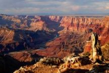 Grand Canyon / Planning for a trip to the Grand Canyon / by Valerie Ore