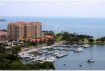 St Petersburg, Florida homes and condos for sale / Real Estate and Homes for Sale in city of St Petersburg / by Rae Catanese   Tampa Real Estate