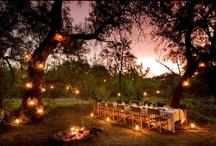 Karoo/Safari Hideaways / Some of our favorite Karoo and Safari Hideaways..
