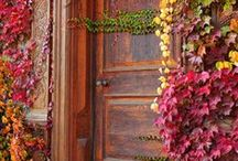Interesting doorways / Doors and doorways have so much personality and so much history.   / by Adora Racho