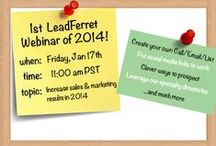 Free LeadFerret Webinars / Communicating free webinars with nice visual graphics  / by LeadFerret