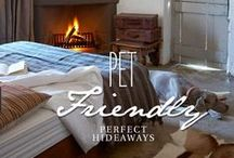 Pet Friendly Hideaways / Here is a list of our properties which welcome your furry family members. #petfriendly #traveling #southafrica The stipulation is that all dogs must be well-behaved, no fleas, have their own beds, stay off the furniture and not chase the wildlife!