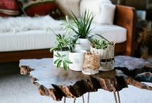 Interior: Home Goods / Products for the home.  / by Star Willow