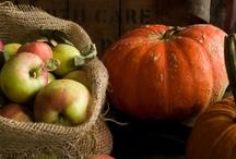 Crisp Autumn / by Tiffany Hill
