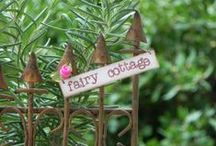 fairy gardens & gnomes / by Heather Shelton
