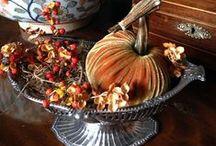 Velvet Pumpkins / Gorgeous velvet pumpkins with natural stems.