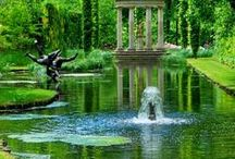 green spaces / Green the color of life, the green of the trees , the green hedges and all formal gardens, what a delight to behold. / by C-ora Raven