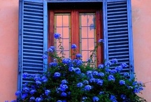 Windows / by Juliann Balcom