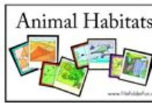 Science: Zoology Homeschool / all grades, biology, zoology, science. homeschool curriculum, resources