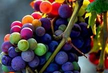 food that nourishes my cells & spirit