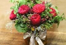 Holiday Florals / Browse our holiday floral picks!