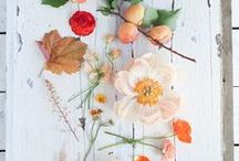 Loose & Airy Florals