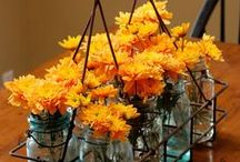 """The color orange... / Orange is a happy, vibrant color perfect for """"pops"""" of color or more... / by Dianne Allen"""