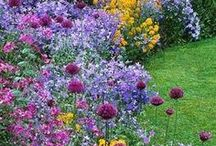 Perennial gardens...