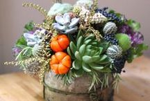 Bloom into Fall / Our favorite Autumn arrangements designed by BloomNation local florists!