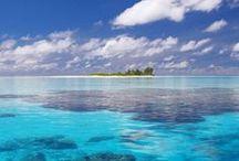 The Caribbean...