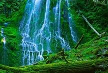 waterfalls / by Jana Leeney