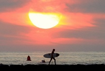 Surf or Die / Give a man a surfboard, and you've distracted him for a day. Teach a man to surf, and you can't get him to work.  / by Sportbay