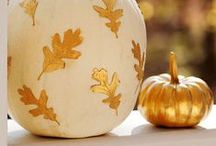 Seasons | Punkin. / by Jennifer Bilton